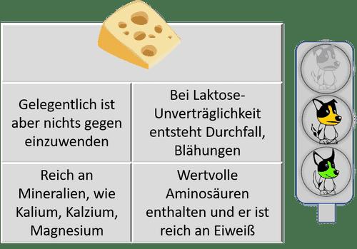Dürfen Hunde Käse essen