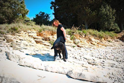 hunde spiele: hund läuft slalom durch die beine des menschen